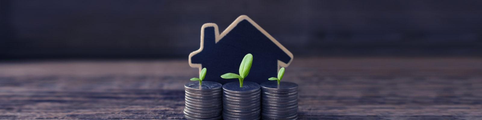 Immowerk - Immobilienmakler mit klugen Ideen